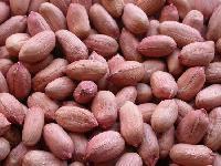 Bold Peanuts