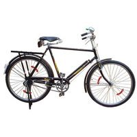 Roadster Philips Type  Bicycle