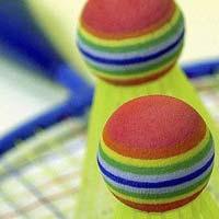 Badminton Court Installation Services