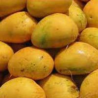 Fresh Banganapalle Mango