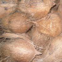 Organic Coconuts