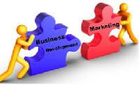 Business Development & Marketing Service