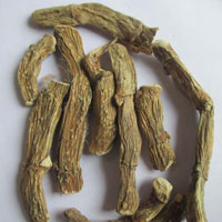 Dried Acorus Calamus