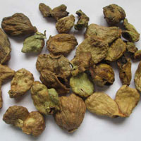 Dried Terminalia Chebula