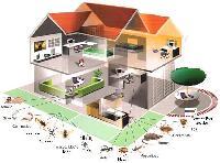 Termite Pest Control Services