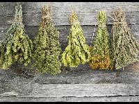 Natural Dried Herbs