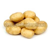 Fresh Potato - Manufacturer and Wholesale Suppliers,  Gujarat - Shree Jagdmba Enterprise