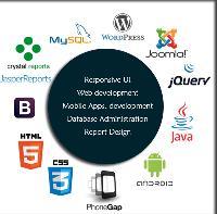 Technology Developement Services
