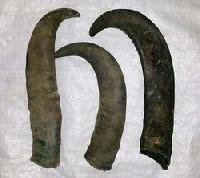 Raw Horn
