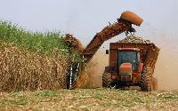 Sugar Cane Harvesting Machine