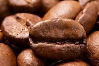 Arabica AA Coffee Beans