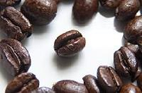 Robusta AA Coffee Bean