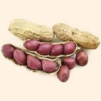 Shelled Groundnuts