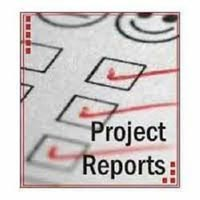Technical Project Report Services