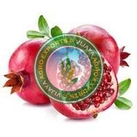 Fresh Pomegranate - Manufacturer, Exporters and Wholesale Suppliers,  Telangana - Vijaya Agro Exports