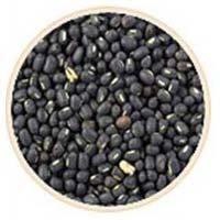 Organic Black-gram