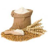 Grain Flour