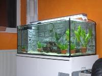 Glass Fish Aquariums
