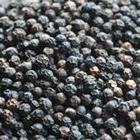 Black Pepper - Manufacturer, Exporters and Wholesale Suppliers,  Assam - Embryonic Group