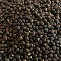 Black Moong Pulses