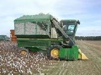 Rice Combined Harvester