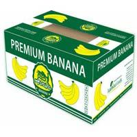 Export Banana