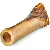 Bone Pipe