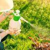 Organic Pesticides