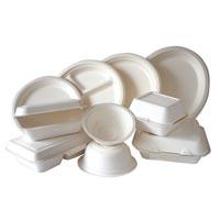Paper Tableware
