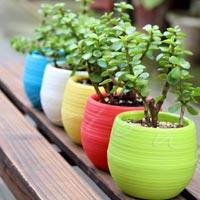 Mini Flower Pot