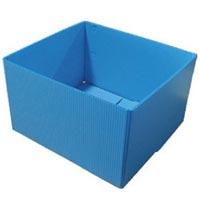 Plastic Carton