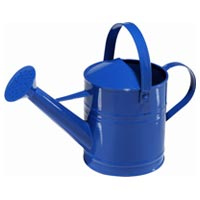 Plant Watering Can