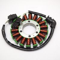 Stator Coil