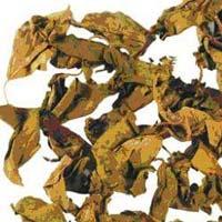 Gurmar Extract