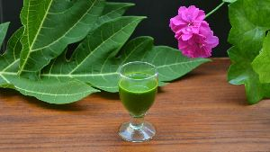 Papaya Leaf Juice