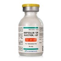 Ampicillin Injection