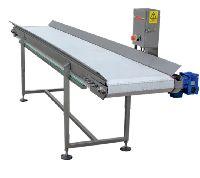 Intermediate Conveyor