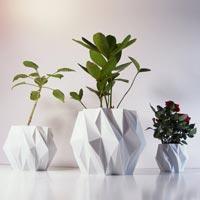 Printed Flower Pots