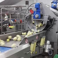 Food Processing Machines & Plants
