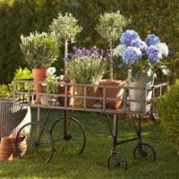 Garden & Landscaping Accessories