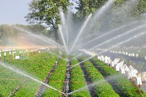 Landscape Irrigation Services
