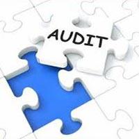 Audits Assurance Services