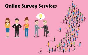 Online Survey Services
