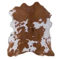 Skin Carpet