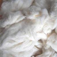 Cotton Comber Waste