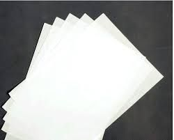 Bible Papers