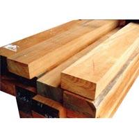 Babool Wood