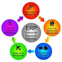 Erp Customization Service