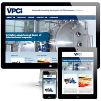 Web Consultant Services