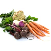 Fresh, Organic & Preserved Vegetables
